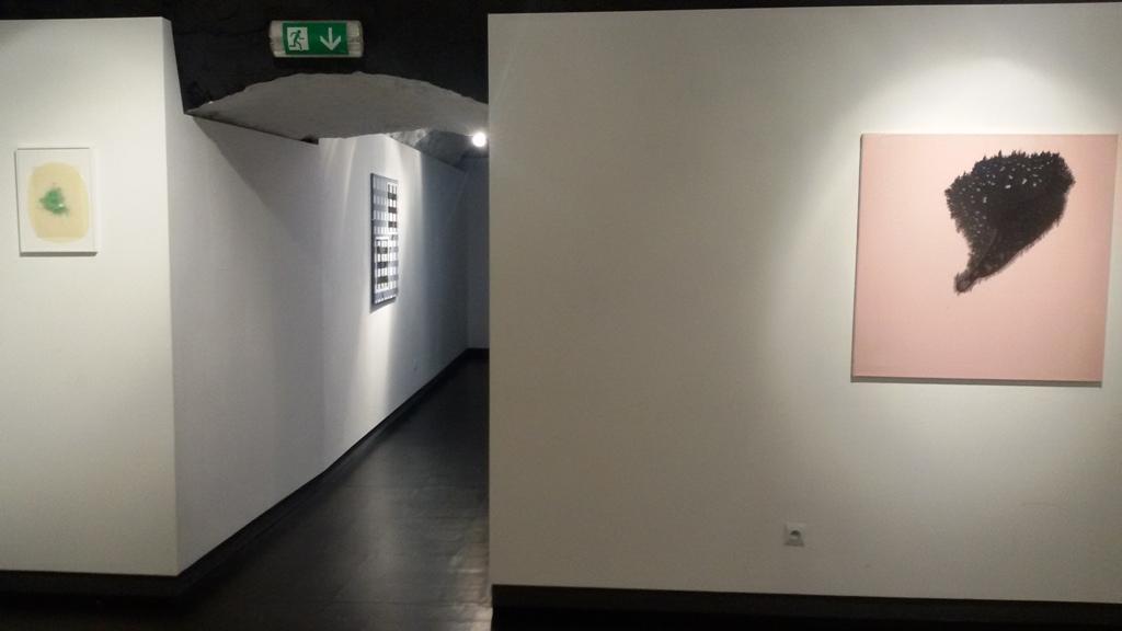 22 Krakow - Sept 2017 - Italian Cultural Institute