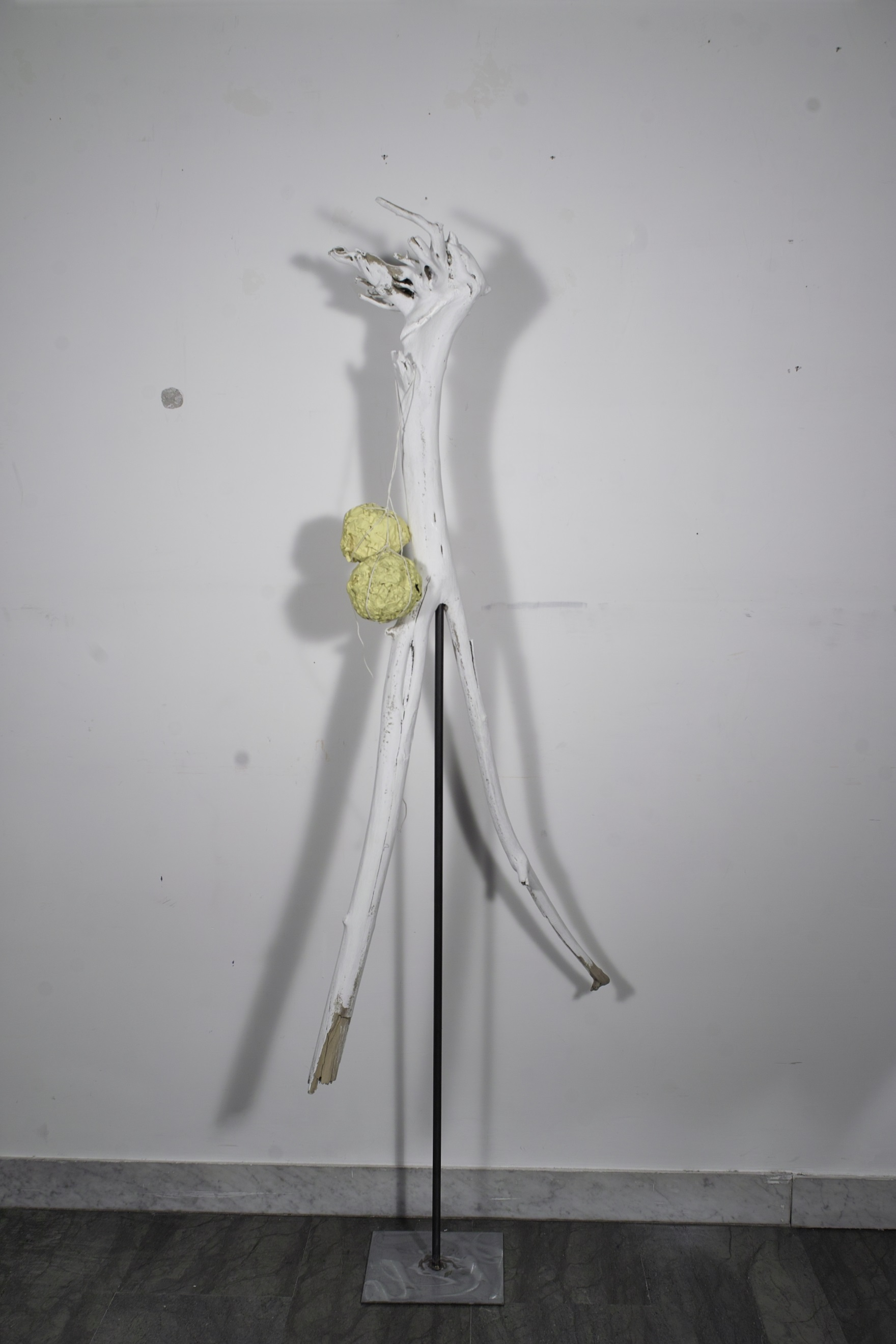 Height 1,50 cm - Width 50 cm